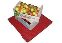 Весы платформенные для взвешивания яблок фото #8