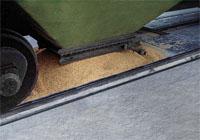 Вагонные весы «БАМ» (для вагонов-хопперов) фото #2